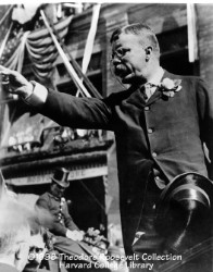 Roosevelt als Redner